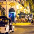 Las Flores Beach Resort -صور الفندق والغرفة