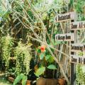 Pai Sukhothai Resort - fotos do hotel e o quarto