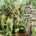 Pai Sukhothai Resort - hotel and room photos