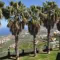 Paseo Mirabal - kamer en hotel foto's