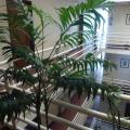 Hotel Apartamento Pantanha - szálloda és szoba-fotók