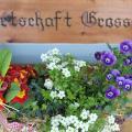 Landgasthof Grossteil - otel ve Oda fotoğrafları