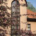 Hotel Bobbio - hotel and room photos