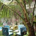Casa Mara Dakar -صور الفندق والغرفة