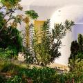 Pelican Hotel - תמונות מלון, חדר