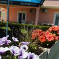 Darijan Apartments - hotel and room photos