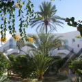 Menzel Dija - fotografii hotel şi cameră