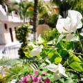 Hotel Maya Bric - on Fifth Avenue camera foto