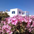 Nicos Studios & Apartments -호텔 및 객실 사진