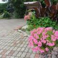 Nemunas Tour Residence - hotel and room photos