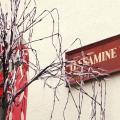 Jessamine House Hotel -صور الفندق والغرفة