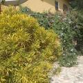 Sanchaba Yellow Apartments - khách sạn và phòng hình ảnh