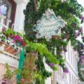 Romantic Hotel Istanbul - фотографії готелю та кімнати