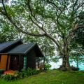 Phi Phi Natural Resort - ξενοδοχείο και δωμάτιο φωτογραφίες