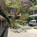 Posada de Don Jose - fotos de hotel y habitaciones