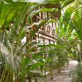 Canaima Chill House - hotel and room photos