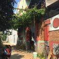 Ngoc Tran Guesthouse - hotel and room photos