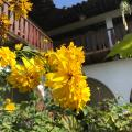 Hotel Madrugada Copan - ホテルと部屋の写真