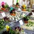 Arden City Hotel-Special Category - chambres d'hôtel et photos