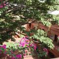 Villa Rose - hotel and room photos