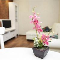 Apartments, Apartment on Bulvar Mira 8