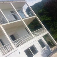 Гостевые дома, Temo's guest house