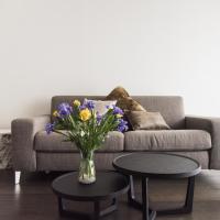 Design & New Center Apartments