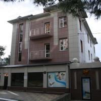 Отель Олина