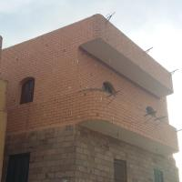 Bed and breakfasts, King Nubian guest house