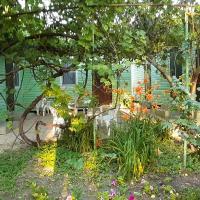 Гостевой дом Тихий Сад