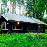 Уютный финский дом у подножия горы