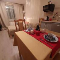 Апартаменты/квартиры, Уютная КВАРТИРА-студия рядом с метро в Санкт-Петербурге