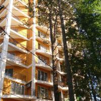 Апартаменты/квартиры, Apartment Pearl of Ureki