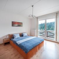 Apartamenty, Apartmán U Lanovky