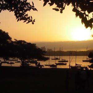 Robertson Park, Sydney