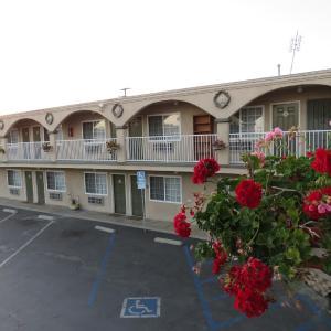 Foxy's Den Motel, Los Angeles