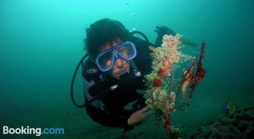 Camiguin Volcan Beach Eco Retreat & Dive Resort | Camiguin