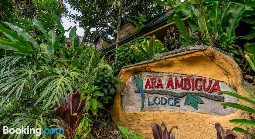Rabatt-Verkauf das beste Markenqualität Ara Ambigua Lodge | Chilamate & Around, Costa Rica - Lonely ...