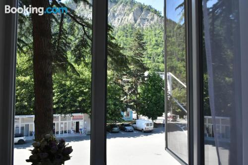 Place in Borjomi with internet