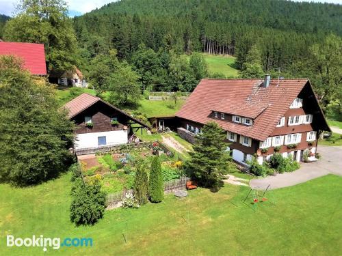 Apartamento para cinco o más en Alpirsbach con terraza