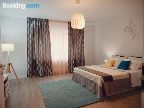 Apartamento cuco de apartamento de una habitación.