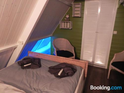 Place for two people. Zaandijk at your hands!