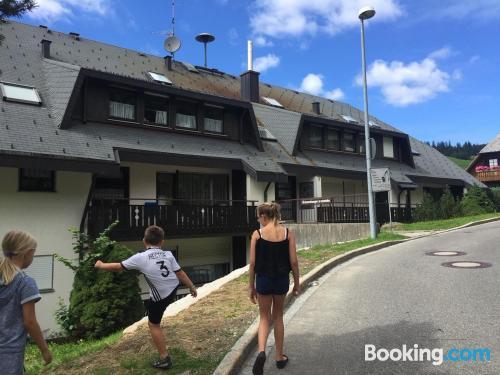 Apartamento apto para animales en Todtnauberg ideal para familias.