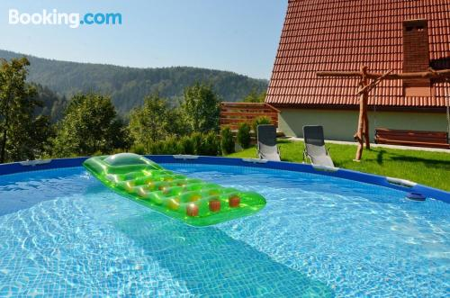 Apartment with pool. Dog friendly!