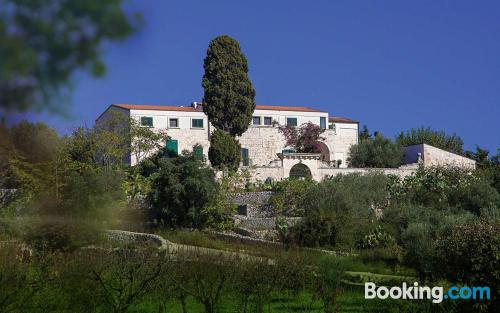 Pet friendly home in Conversano for two people
