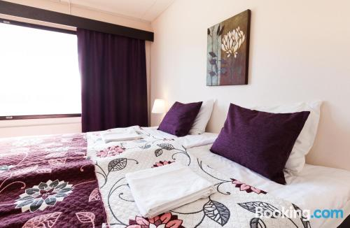 Huge dog friendly apartment. Perfect for 6 or more
