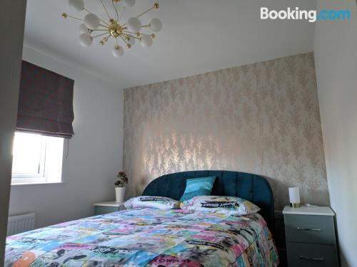 Perfect 1 bedroom apartment with wifi.