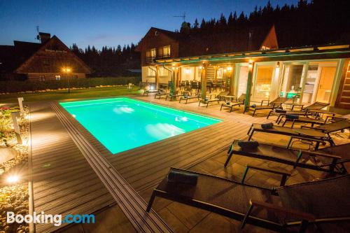 Swimming pool and internet place in Harrachov. 33m2!
