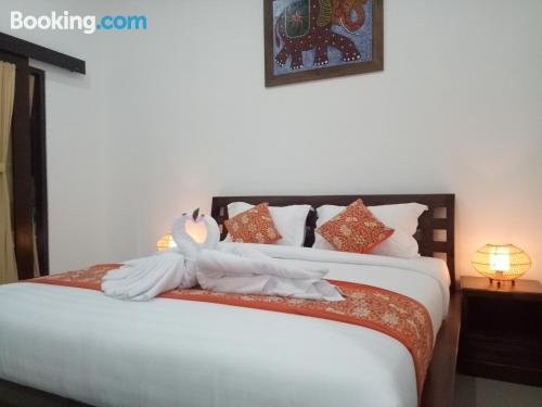 Place for two people in Denpasar. Internet!