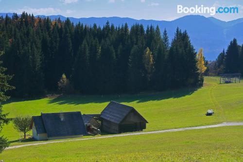 Home in Bohinjska Bistrica. Huge!